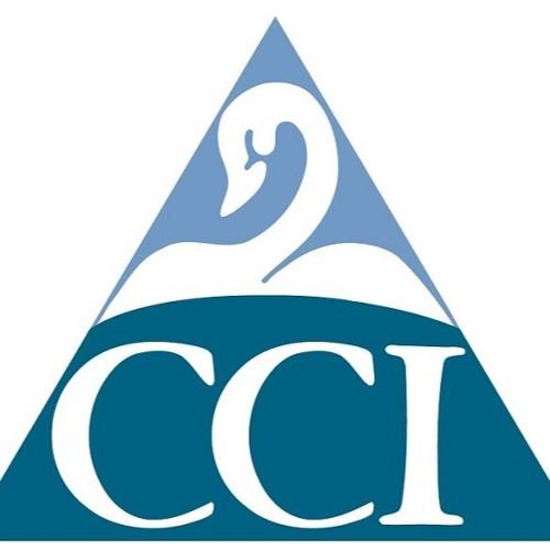 CCI SEO Testimonial
